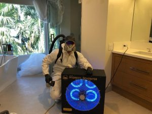Mold Removal Florida