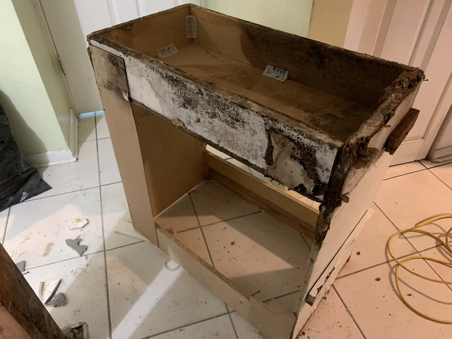 mold-remediaiton-miami