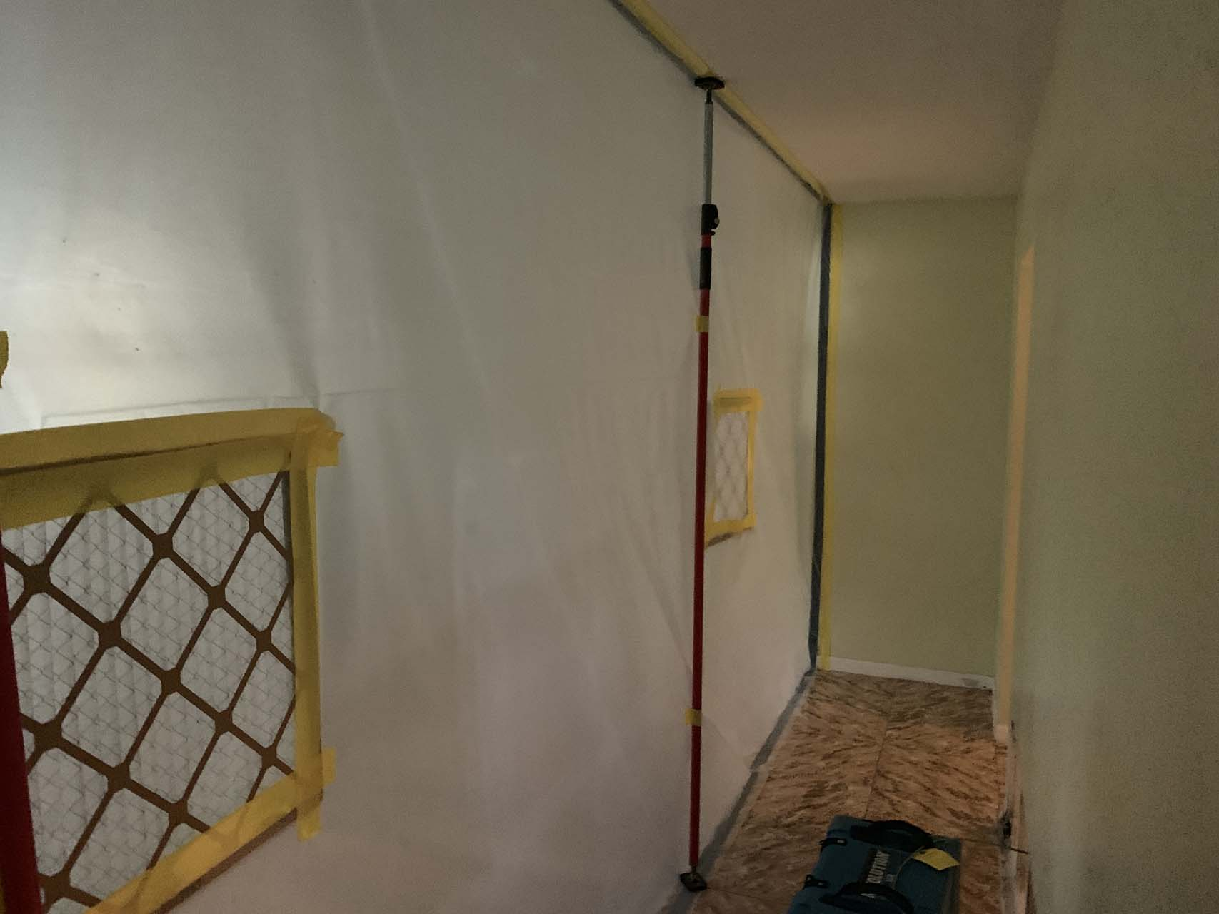 mold-removal-florida